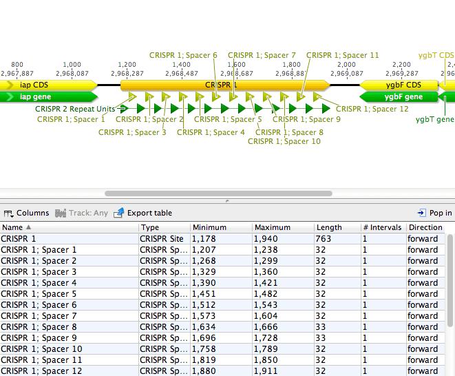 crispr recognition tool